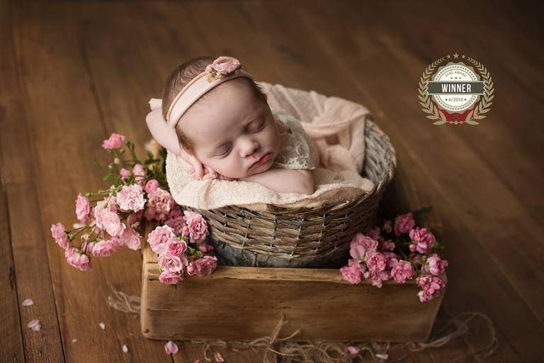 photographe bebe en sarthe